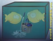 Чистка аквариумов недорого
