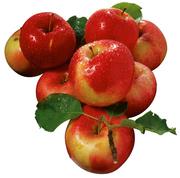 Купим Яблоки ОПТОМ