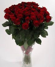 Розы Донецк 101 Роза Цветы