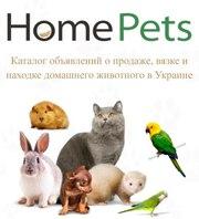 HomePets. Объявления о продаже,  вязке домашних животных в Украине