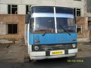 продам автобус икарус 260