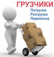 Грузоперевозки,  вывоз мусора,  услуги грузчиков. Ремонтные работы.