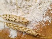 Мука пшеничная оптом. п.Новоелизаветовка